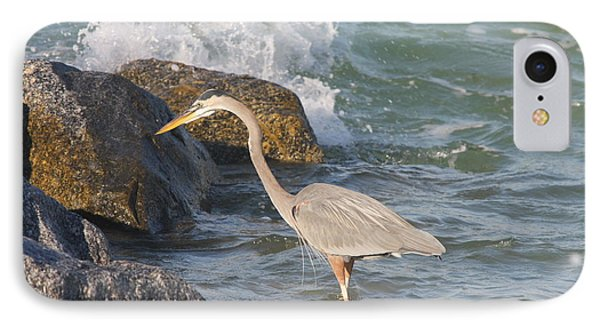 Great Blue Heron On The Prey IPhone Case by Christiane Schulze Art And Photography