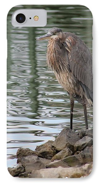 IPhone Case featuring the photograph Great Blue Heron On Watch by Robert Banach