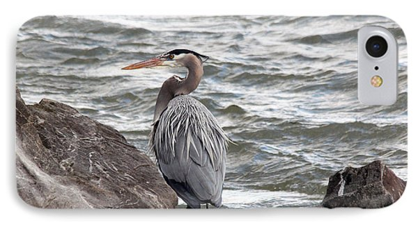 IPhone Case featuring the photograph Great Blue Heron by Trina  Ansel