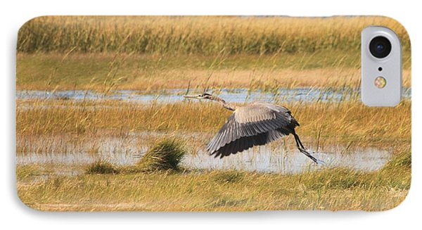 Great Blue Heron Wellfleet Bay Marsh IPhone Case