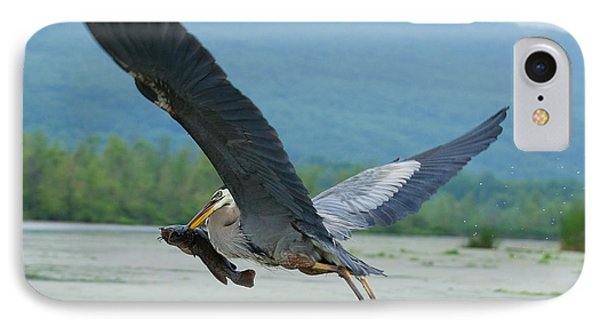 Great Blue Heron With Fish IPhone Case by Roger Bailey
