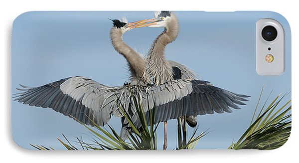 Great Blue Herons Courting IPhone Case