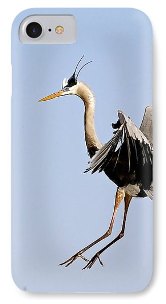 Great Blue Landing IPhone Case