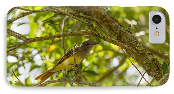 IPhone Case featuring the photograph Great Crested Flycatcher by Doug McPherson