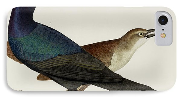 Great Crow Blackbird IPhone Case by British Library