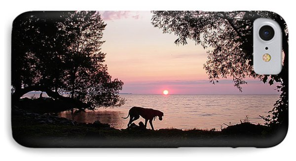 Great Dane Sunset IPhone Case by Aimee L Maher Photography and Art Visit ALMGallerydotcom