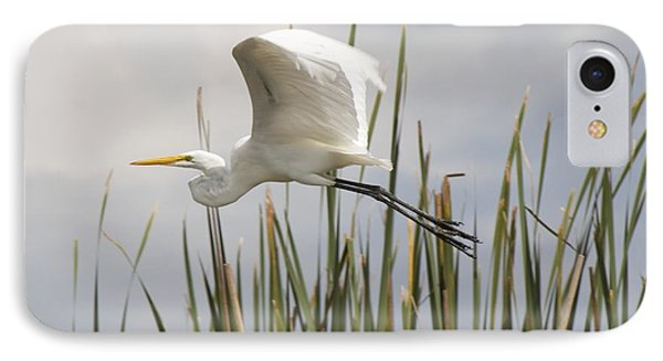 IPhone Case featuring the photograph Great Egret by David Grant