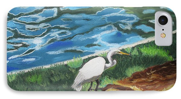 Great Egret In Florida IPhone Case