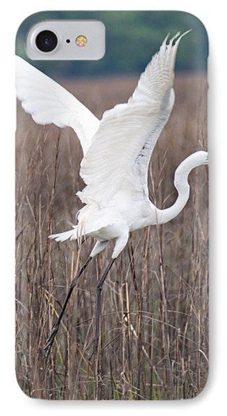 Great Egret In Flight IPhone Case by John Black