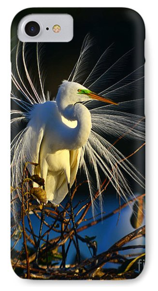 Great Egret With Breeding Plumage 1 IPhone Case by Jane Axman