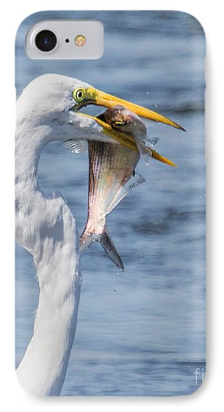 IPhone Case featuring the photograph Great Egret With Fish by Susi Stroud