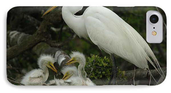 Great Egret With Young Phone Case by Bob Christopher