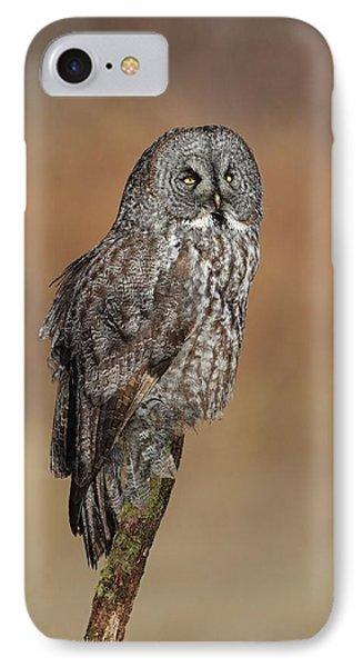 Great Gray Owl Phone Case by Daniel Behm