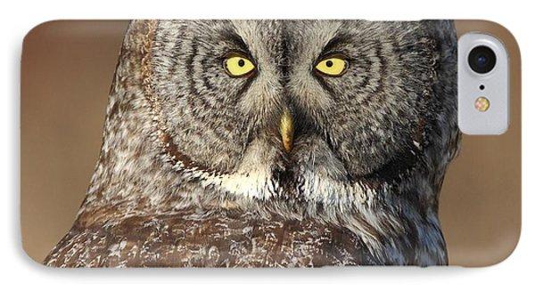 Great Gray Owl Portrait Phone Case by Daniel Behm