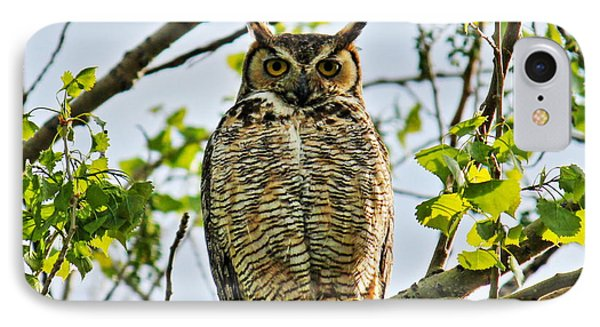 Great Great Horned IPhone Case