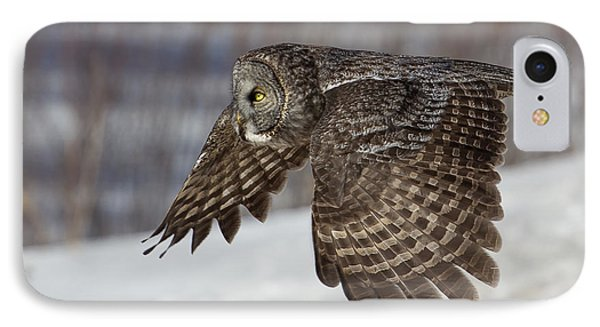 Great Grey Owl In Flight Phone Case by Jakub Sisak