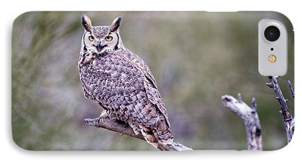 IPhone Case featuring the photograph Great Horned Owl by Dan McManus