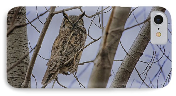 Great Horned Owl IPhone Case by Gary Hall