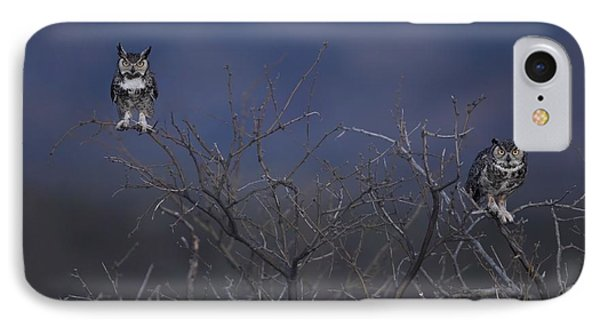 Great Horned Owl Pair At Twilight Phone Case by Daniel Behm