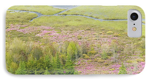 Great Meadow Flowers Blooming In Acadia National Park IPhone Case by Keith Webber Jr