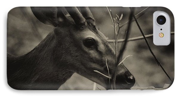 Great Smoky Mountains IPhone Case by Jerome Lynch