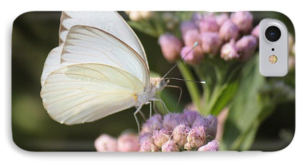 Great Southern White Butterfly On Pink Flowers IPhone Case by Roena King