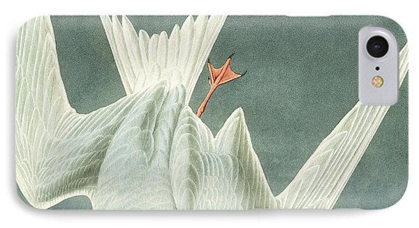 Great Turn IPhone Case by John James Audubon