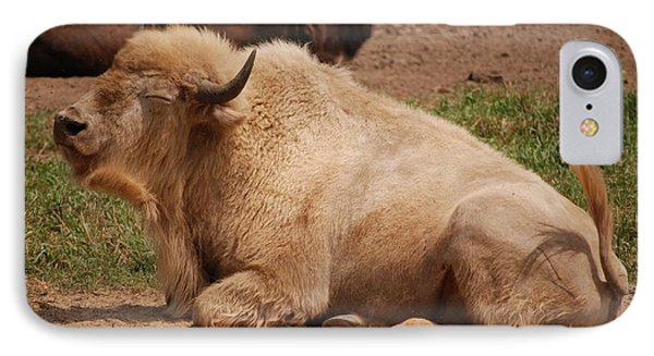 IPhone Case featuring the photograph Great White Buffalo by Mark McReynolds