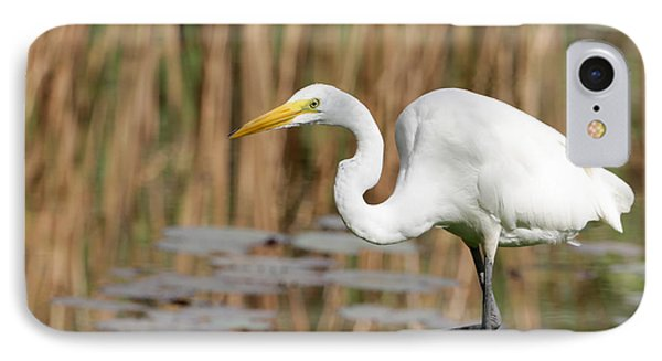 Great White Egret By The River Phone Case by Sabrina L Ryan