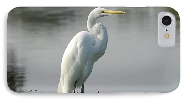 Great White Egret Phone Case by Charles Beeler