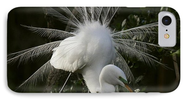 Great White Egret Displaying IPhone Case by Myrna Bradshaw