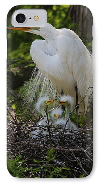Great White Egret Mom And Chicks IPhone Case