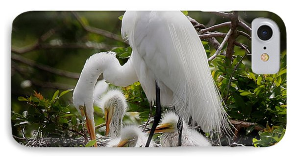 Great White Egret Nesting IPhone Case by Joseph G Holland