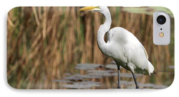 Great White Egret Taking A Stroll Phone Case by Sabrina L Ryan