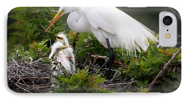 Great White Egret With Chicks IPhone Case by Joseph G Holland