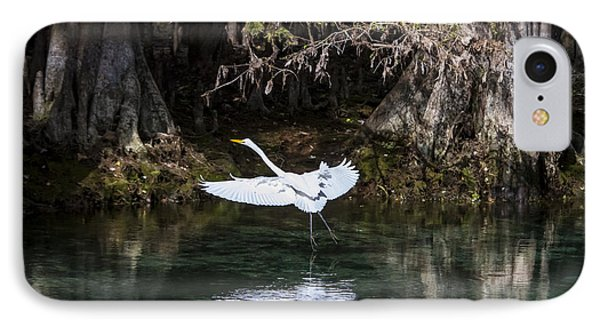 Great White Heron In Flight Phone Case by Charles Warren