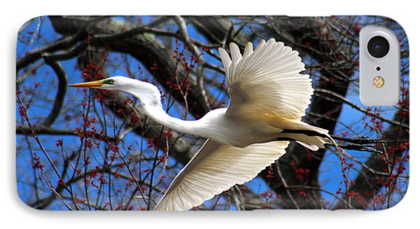 Great White Heron Islip New York IPhone Case
