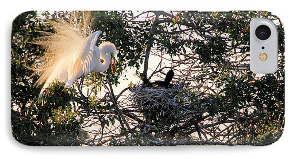 Great White Heron With Chicks Phone Case by Rosalie Scanlon