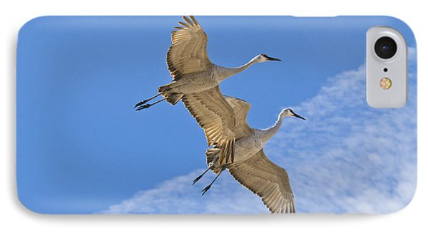 Greater Sandhill Cranes In Flight Phone Case by William H Mullins