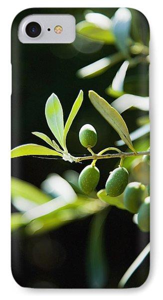 Greece, Halkidiki, Green Olives IPhone Case