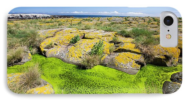 Green Algae And Yellow Lichen IPhone Case by Ashley Cooper