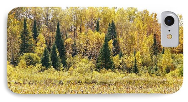 IPhone Case featuring the photograph Green Amongst The Gold by Susan Crossman Buscho