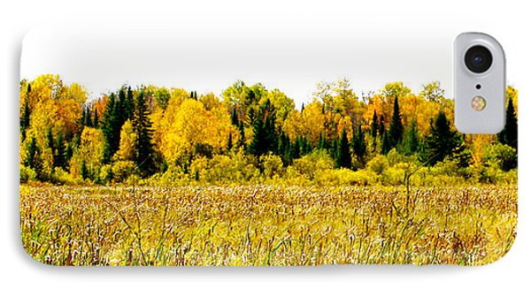 Green Amongst The Gold2 IPhone Case by Susan Crossman Buscho
