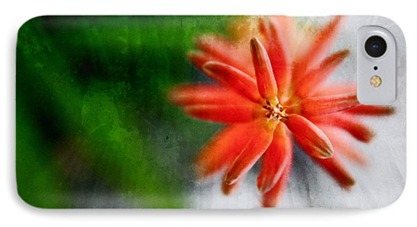 Green And Orange IPhone Case by Sandy Moulder