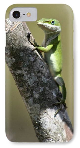 Green Anole Ready For Lunch IPhone Case by Jeanne Kay Juhos