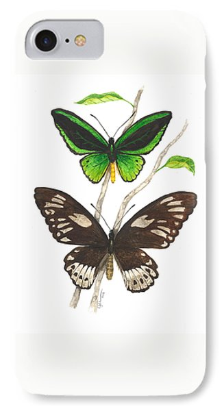 Green Birdwing Butterfly IPhone Case by Cindy Hitchcock