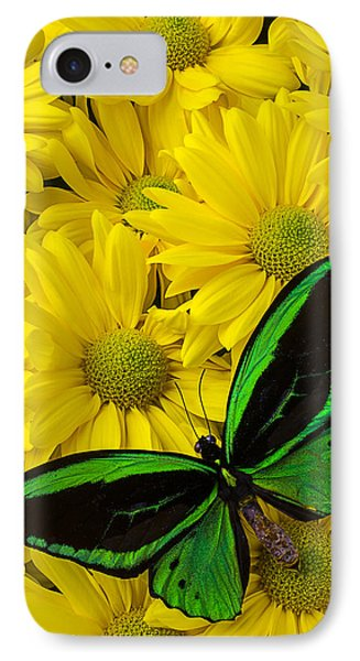 Green Butterfly On Yellow Mums Phone Case by Garry Gay