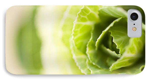 Green Cabbage Phone Case by Anne Gilbert