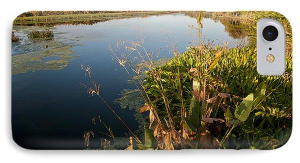 Green Cay Wetlands, Fl Phone Case by Mark Newman