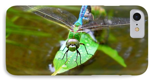 Green Darner Dragonfly Phone Case by Christina Rollo